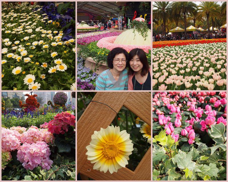 Flower show 2011
